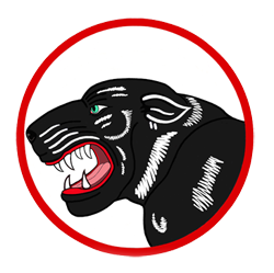 "822nd Bomb Squadron ""Black Panthers"""